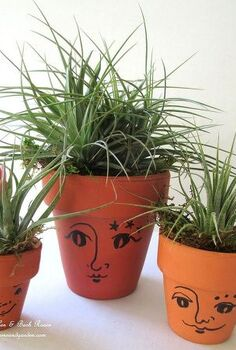 get creative with air plants, gardening, Air plant Heads