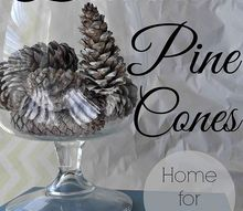 bleached pine cones, crafts, 5 Fill a vase a bowl or make ornaments with these beauties