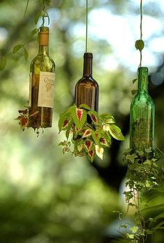 ideas on how to recycle wine bottles, outdoor living, repurposing upcycling, recycled wine bottle planters