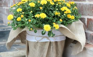diy burlap fall planter, crafts, curb appeal, flowers, gardening, repurposing upcycling, seasonal holiday decor, Here my Mums are all decked out for Fall