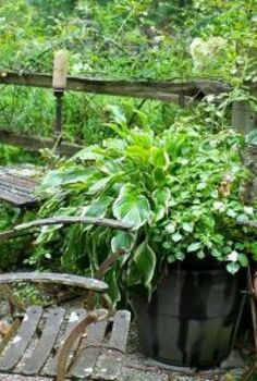 get some gardening ideas from this amazing garden, gardening, outdoor living, ponds water features, Jon placed several sitting areas around the pond to add a rustic ambience
