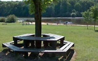 q anybody know where a person could purchase a pre made table bench to go around a, outdoor furniture, outdoor living, painted furniture, Table around a tree with bench