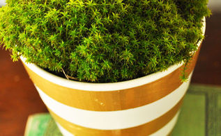 decorate your boring planter with duct tape, gardening, home decor, repurposing upcycling
