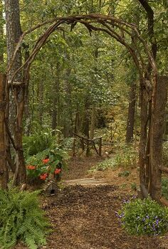 this award winning outdoor space was created by recycling fallen trees recycled, gardening, outdoor living, repurposing upcycling, The Arbor is also built with fallen tree and muscadine vines pulled from the trees