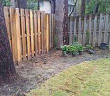 q ideas for landscaping along a backyard fence, flowers, gardening, landscape, perennial