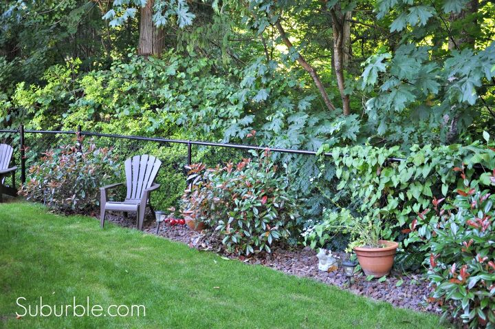 Our Backyard Transformation Hometalk
