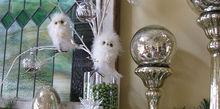 owl themed christmas mantel, christmas decorations, seasonal holiday decor