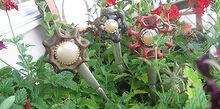 funky fork flowers and more, flowers, gardening, repurposing upcycling