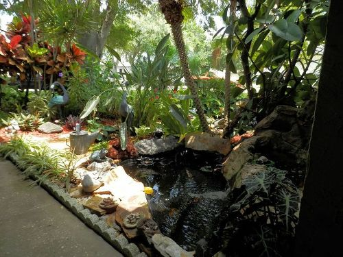 Koi pond care hometalk for Outdoor fish pond care