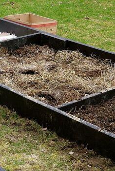 lasagna gardening, gardening