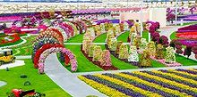 the worlds largest natural flower garden dubia miracle garden black thumb, gardening
