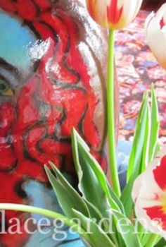 5 most popular flowers u s garden outdoors poll bombay outdoors