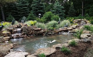 pondless waterfall to pond oakbrook il installed by gem ponds, gardening, outdoor living, ponds water features, Project complete No doubt Roy is living the high life