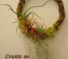 create an air garden with a tillandsia wreath, crafts, gardening, wreaths, Create your own Air Garden With minimal upkeep these gardens can stay up year round Offering 365 days of beauty