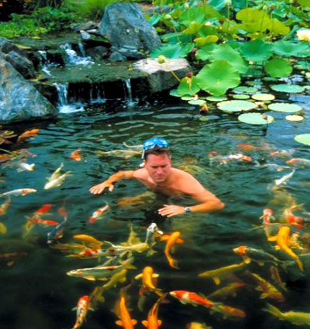 Backyard Ponds Make Fish Keeping Fun
