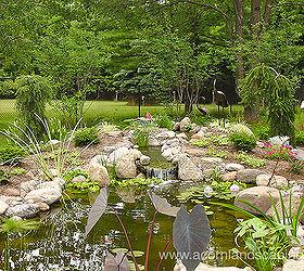 Ecosystem Ponds Garden Ponds Fish Ponds Landscape Ponds
