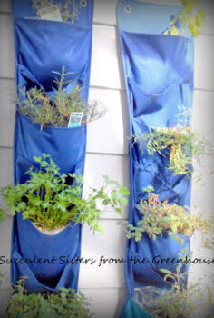 herb gardening for the home, cleaning tips, gardening
