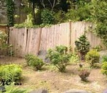 building a fence part 1, diy, fences, outdoor living, Before When we moved in the yard was covered with un contained Bamboo after Hours of digging we discovered the fence was totally dilapidated