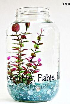 sometimes a pickle jar isn t just a pickle jar, repurposing upcycling, This cute fish bowl