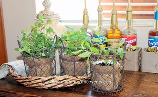 burlap rubber bands and herbs, container gardening, crafts, gardening, repurposing upcycling, Using Rubber bands as plant stakes using a rubber band and sharpie