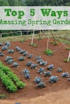 top 5 ways to prepare your garden for spring, gardening, homesteading