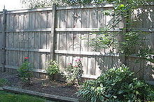 outdoor landscape, fences, gardening, landscape, outdoor living, Before Backyard Fence