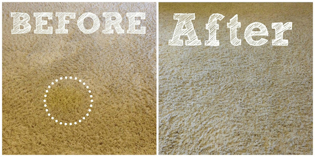 how to remove pet stains from carpet hometalk. Black Bedroom Furniture Sets. Home Design Ideas