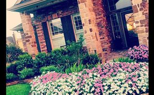 curb appeal curbappeal, flowers, gardening, front beds