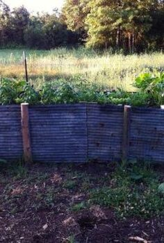 red neck raised bed, gardening, landscape, raised garden beds, Old tin cedar posts composted horse manure