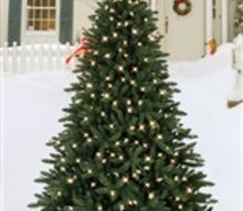 christmas tree, christmas decorations, gardening, landscape, outdoor living, seasonal holiday decor