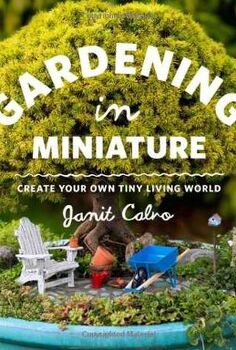 create your very own miniature garden patio, crafts, gardening, Gardening in Miniature by Janet Calvo