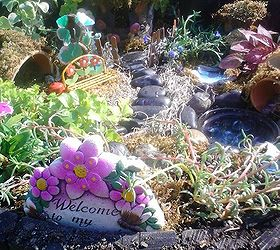 Making A Fairy Garden From Objects Mostly Found At The Thrift Store,  Container Gardening,