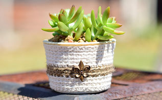 upcycle container for succulents, container gardening, flowers, gardening, repurposing upcycling, succulents