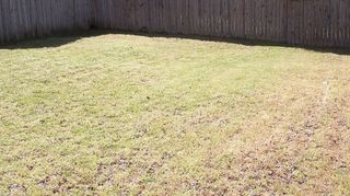 q grass id and what to do with the weeds, gardening, landscape