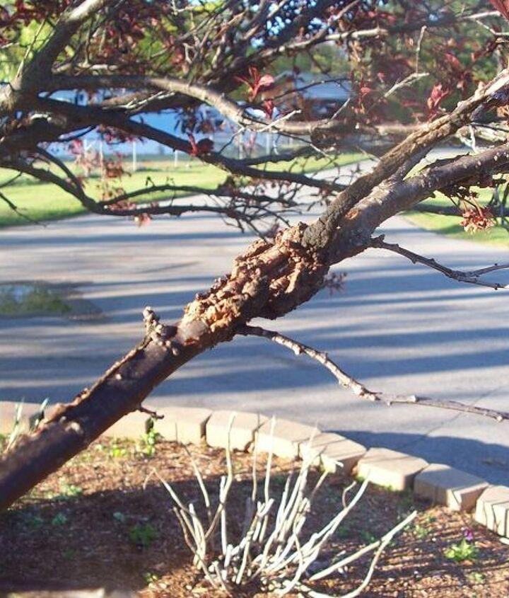 More - in a bigger branch