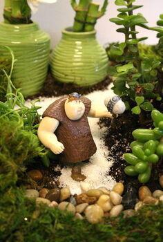 mini garden, gardening, succulents