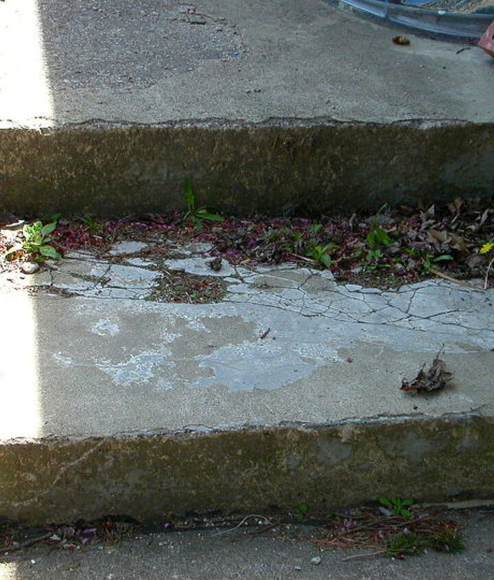 another section of same step, grows weeds out of it