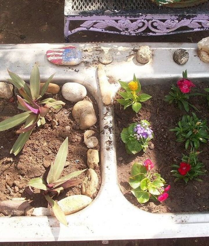 Used another old sink to plant some of the new spring flowers.
