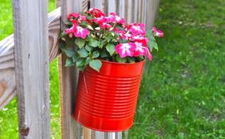upcycling cans to diy hanging fence planters, flowers, gardening, outdoor living, repurposing upcycling, Blooms in my bright red upcycled pots
