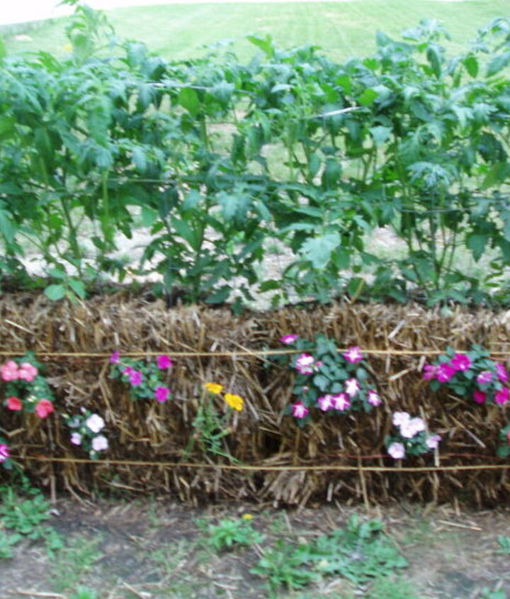 Planting annuals in the sides also makes the garden look attractive as well as productive.