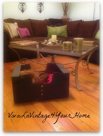 box to bed, crafts, pets animals, repurposing upcycling