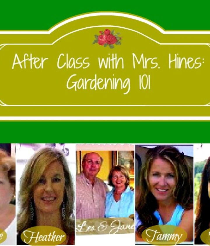 do you wish you had a green thumb, flowers, gardening, My fabulous co hosts are here to take the guess work out of starting your own garden