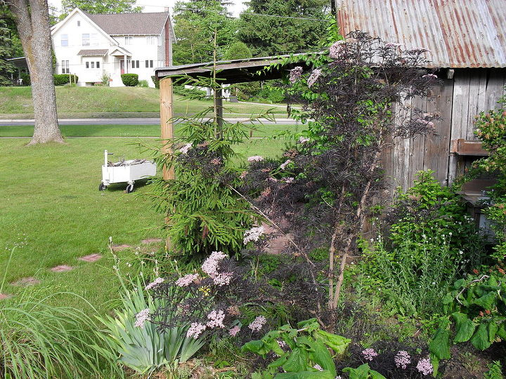 The Potting Shed. We tore down and old barn and recycled some of it into a potting shed. One of my favorite places to be.