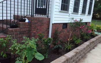 beautiful plants, flowers, gardening, hibiscus, raised garden beds, Just kept adding for a couple weeks
