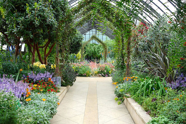 Mediterranean garden in full bloom