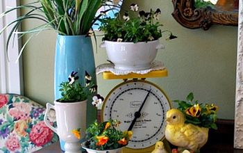 Daffodil and Pansy Spring Vignette