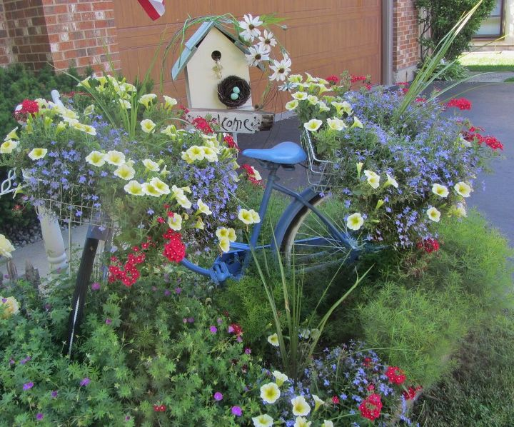 This is my old vintage bike I painted blue and then added sun loving flowers to the vintage baskets on the bike. This is an easy and sweet way to use something vintage for a focal point in the garden.