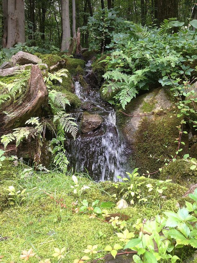 natural or man made, outdoor living, ponds water features