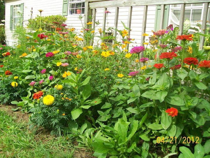 more, gardening