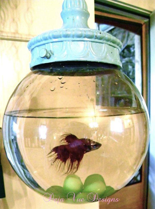 swag turned fish bowl